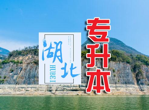 2020年湖北省普通专升本录取政策有哪些?-第1张图片-专升本网