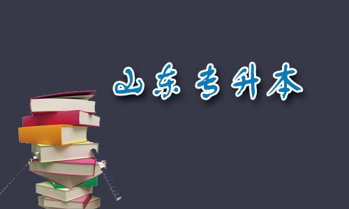 山东专升本:为你列出专升本语文必备考点具体有哪些?