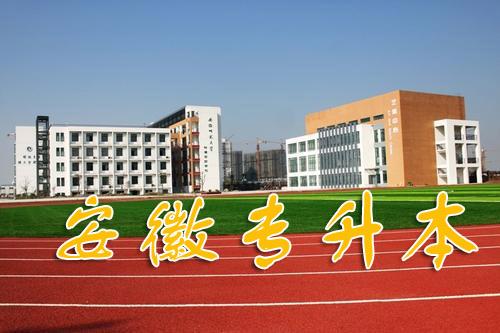 2020年安徽专升本院校专业普通专升本拟招生专业目录及考试指导科目-第1张图片-专升本网