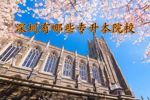 深圳有哪些专升本院校比较好?