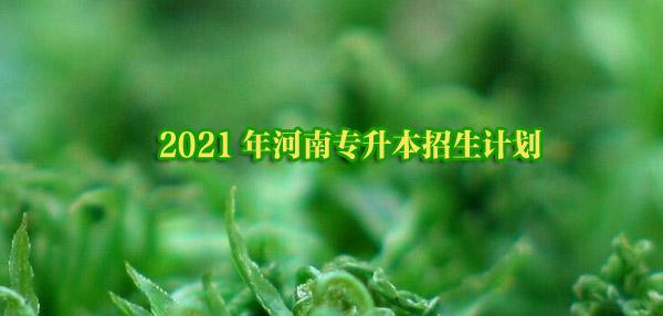 2021年河南专升本招生计划